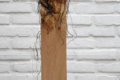 ruimtelijkhout (1)
